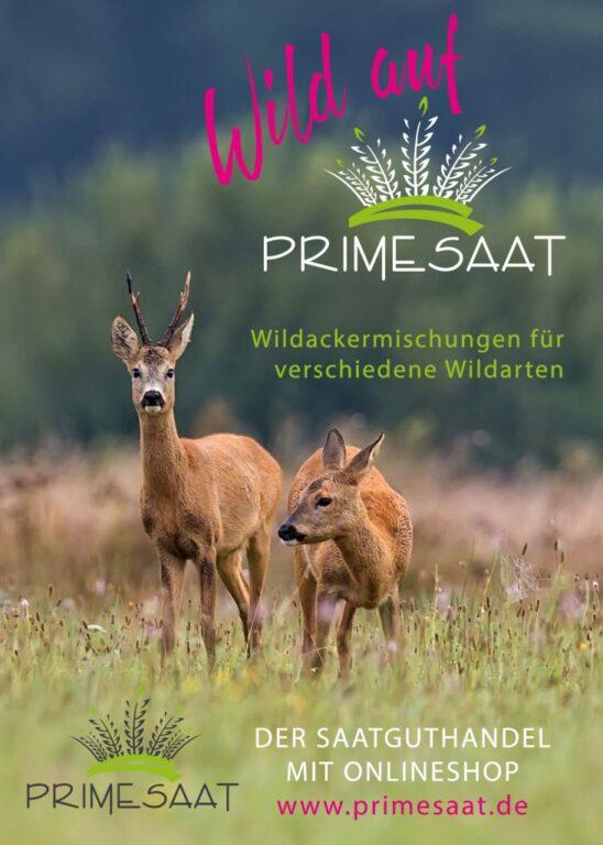 Primesaat Werbeanzeige Wildackermischung